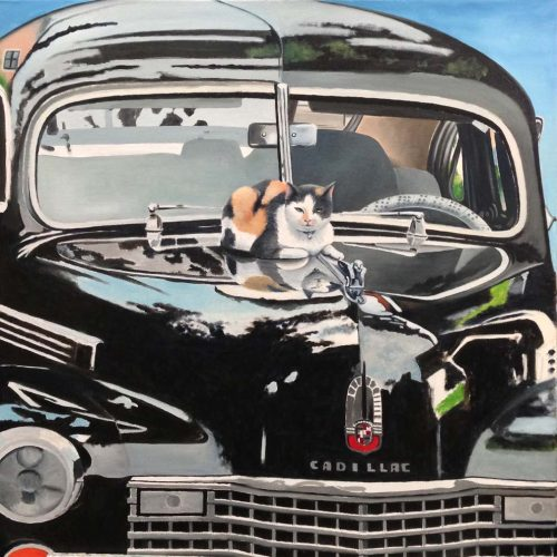 'Kat op Cadillac', olieverf, 60x60 cm