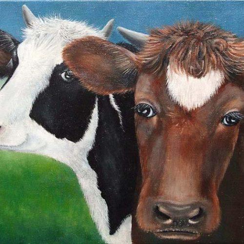 'Koeien met hoorns', olieverf, 30x40