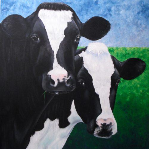 'Koeien', olieverf, 100x100 cm
